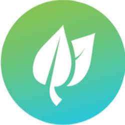 cone-folhas-extratos-naturais.jpg