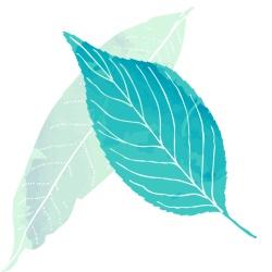 rubian-inovacao-em-residuos-bioativos.jpg